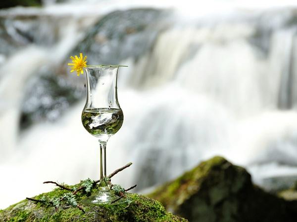 ...будет литься чача - национальный грузинский алкогольный напиток.